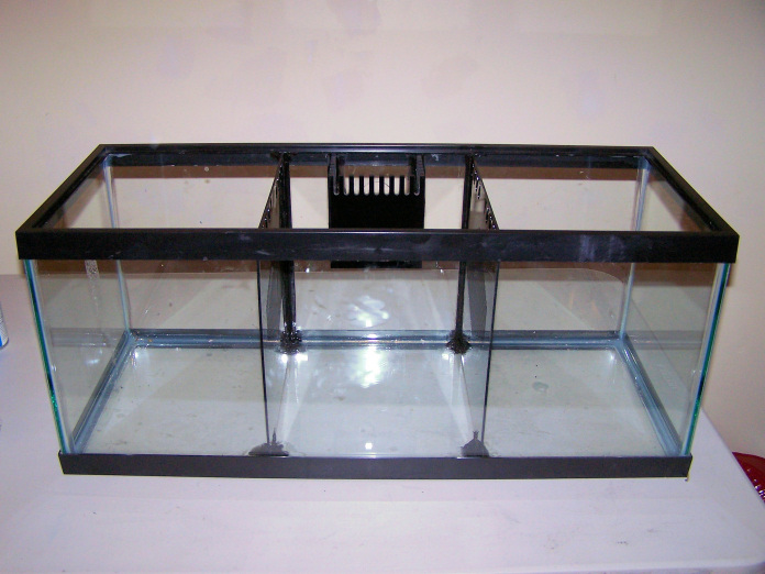 Frog fish experience build thread wmas message board for Fish tank divider